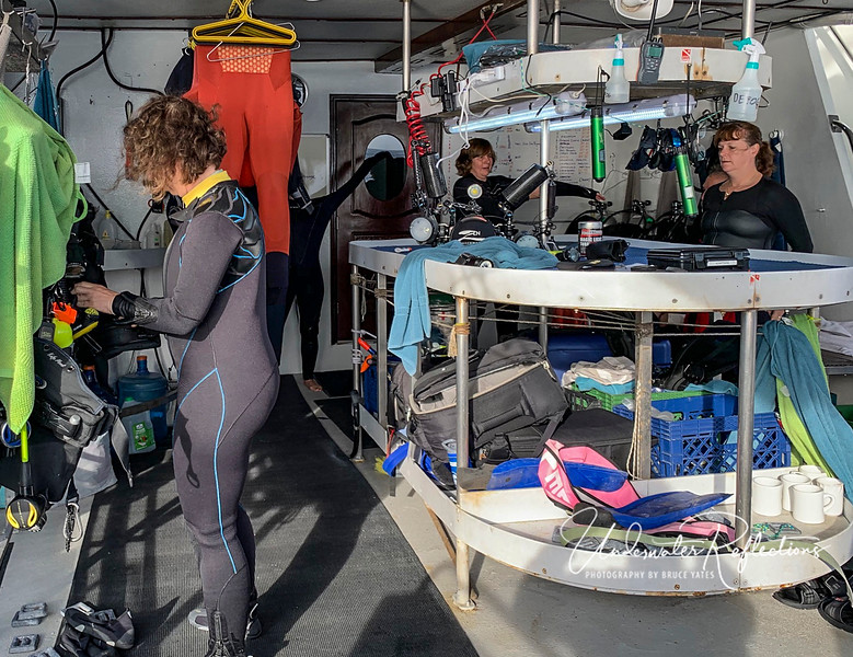 The dive deck was very crowded - among the worst I've seen, and was consistantly hotter than the outside air (which was in the 90's to well over 100), likely due to the engine-room underneath and totally inadequate ventilation.  I spent the entire time sweating.