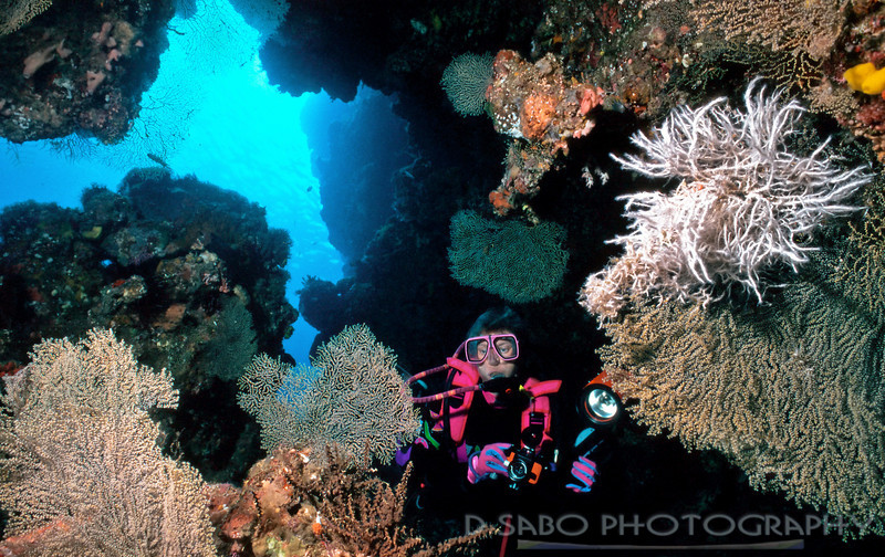 """Underwater Exploration"" A female diver explores near the entrance of an underwater cave in the Solomon Islands"