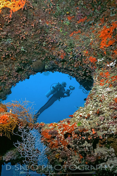 """""""Inside Out"""" A large bommie (coral head) in the Maldive Islands that has a variety of swim through and look through grotto's."""