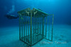 This shark cage is kept on site for production shoots.