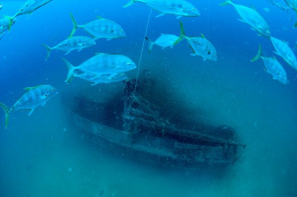 Shipwrecks of FNQ