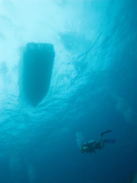 Diver under the dive boat, Grand Cayman - October 2010