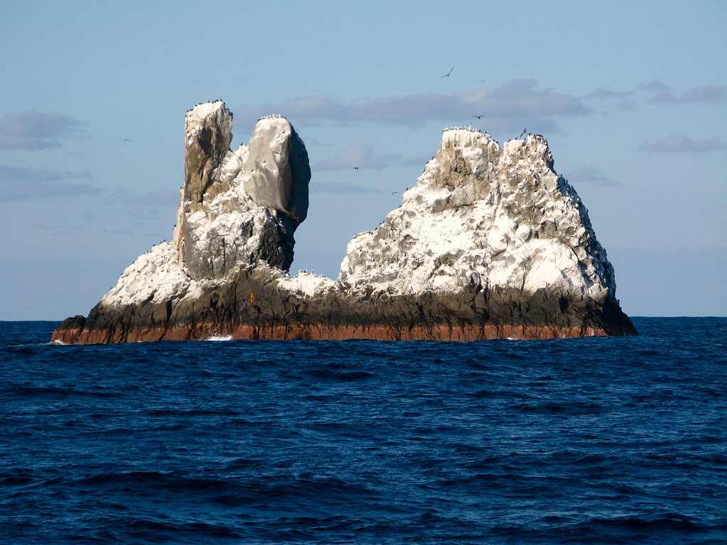 Roca Partida.  This small island is not snow covered.  It is home to hundreds of sea birds.