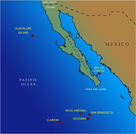 "The 4 Revillagigedo Islands - Socorro, San Benedicto, Roca Partida and Clarion - lie roughly 250 miles SW of Cabo San Lucas, Mexico.  Getting there requires a 24-hour (each way) boat ride from Cabo, and visitors cannot go ashore, as the only ""residents"" are soldiers at a Mexican naval base on Socorro.  We dove on all but Clarion, which is too far West to visit."