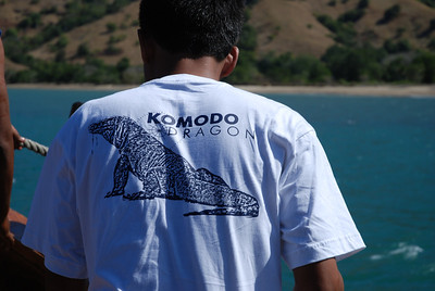 Welcome to Komodo.