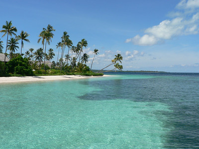 The amazing reefs of Wakatobi_May-2007