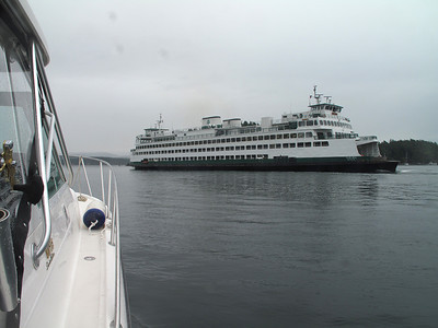 Friday Harbor, San Juan Island. June 7, 2013