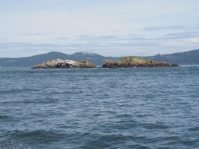 Williamson Rocks, Rosario Strait. June 5, 2013