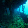Companion way of the Fujikawa Maru.<br /> Truk Lagoon 2013