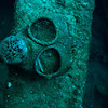 Gas mask on the Nippo Maru.<br /> Truk Lagoon 2013