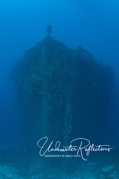 Bow of a shipwreck from the sandy bottom in front of it.  Note the anchor chain, which has become totally encrusted with corals.