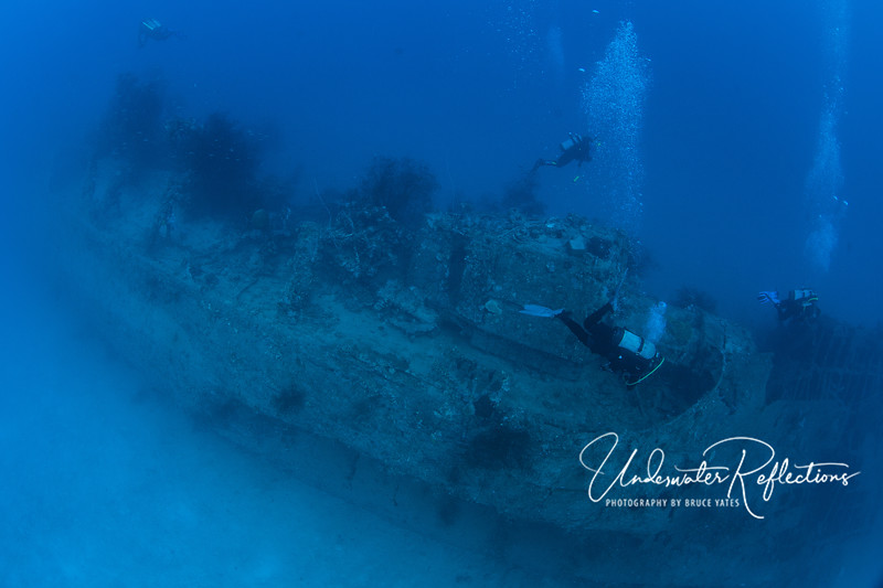 Visibility was typically 50-100 ft, but you can see it was well over 100ft on this particular dive.