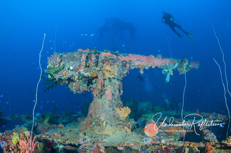 """Bow gun on the San Francisco Maru.  Because of the depth (this shot was taken at 165 feet), there is a bit less life growing on this gun than many of the shallower wrecks in Truk (due to less sunlight).  I was feeling a little """"narc'ed"""" on this dive (technically Nitrogen Narcosis--a high concentration of nitrogen due to the pressure, similar to the feeling you get at the dentist with nitrous oxide), so I only shot a few photos on this wreck and then headed back up.  This big gun was certainly one of the highlights!"""