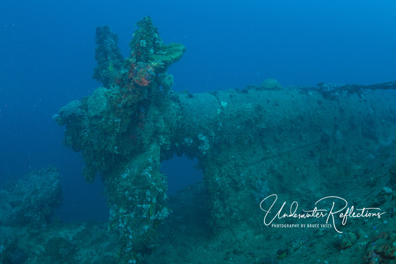 Propeller of an upside down wreck.