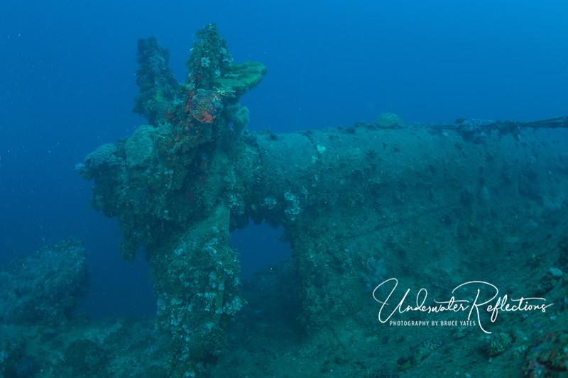 Propeller of an upside down wreck.