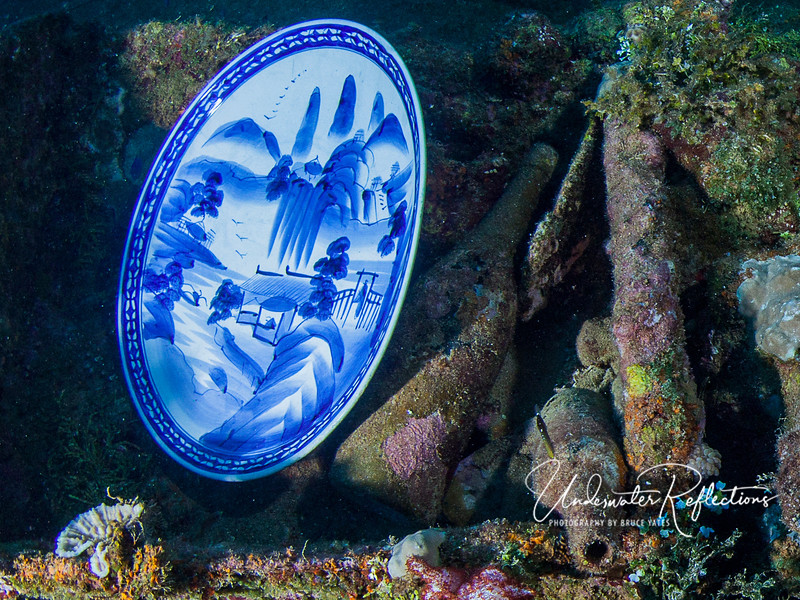 Strangely New.  This serving plate was discovered by one of the crew in between some stacks of paper that kept it pristine and out of the reach of coral and algae.  I was incredulous and thought it had been planted there, but apparently it really IS an official artifact of the ship.