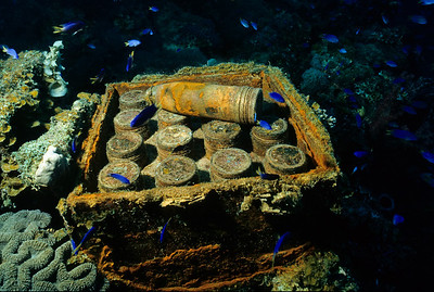 "The Fujikawa Maru had little time to defend herself from American torpedo bombers during the suprise attack. These unused shells lie below the 5"" bow gun."