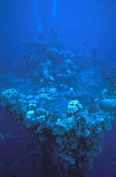 Bow Fujikawa Maru, Truk Lagoon, 1983