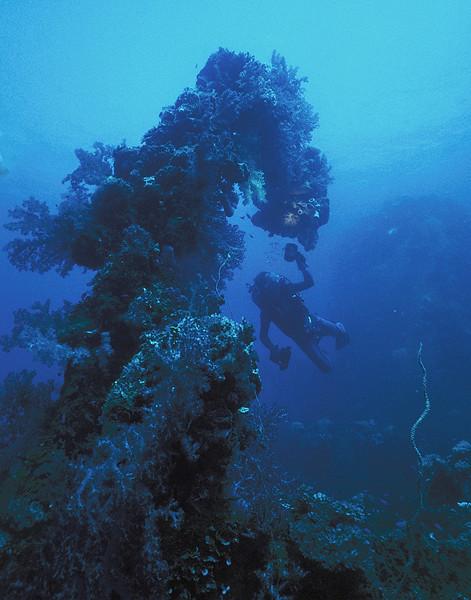 Davit,  Fujikawa Maru, Truk Lagoon, 1983