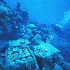 Shinkoku Maru, Truk Lagoon 1982