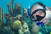 Snorkeling photos, Turks and Caicos<br /> <br /> Michael Rothschild