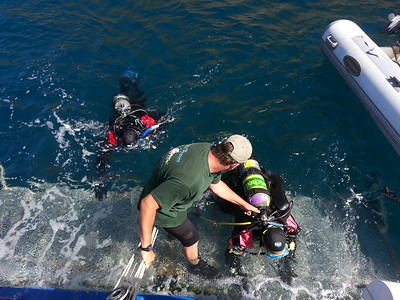 Steven helping divers up onto the swim step.    Peace dive boat, Catalina Island, CA.