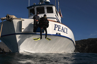 © Joseph W. Dougherty. All rights reserved.  Diver entering water from the bow of the Peace.   Catalina Island, CA.