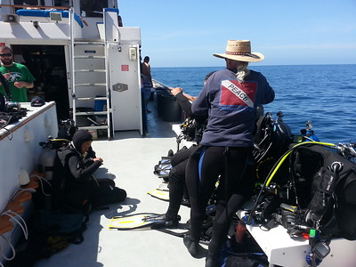 Kevin helps a diver with his gear.   Peace dive boat, Catalina Island, CA.