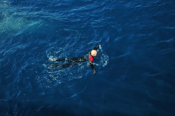 RV Sea Watch Shark Diving -- Sept 2013