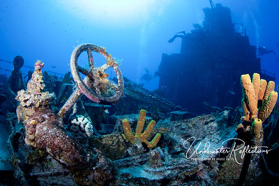A Russian destroyer (Cayman Brac) that has been sunken for 15 years sports yellow sponges, as well as recognizable pieces of metal.