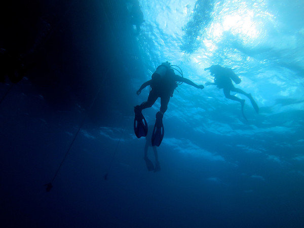 underwater favorites