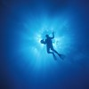 Diver silhouette<br /> Montague Is., Narooma, NSW