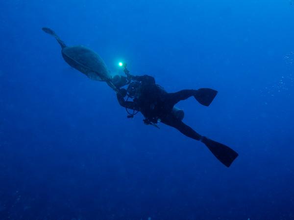 Underwater11/16/14