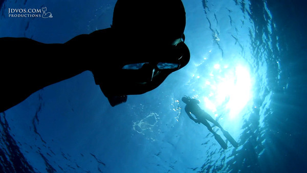 """Inside The Walls - Freediving Ras Mohammed<br /> <br /> Underwater Footage:<br /> Ikelite 7D Housing with 8'' Dome Port<br /> <br /> Tanguy Crusson, Stefan Randig, Gregory Alouache and Jacques de Vos spent the day diving Ras Mohammed and quickly discovered that there were a few routes scuba divers or the average snorkeller could not take...<br /> <br /> Footage shot with mix of cameras (including a 'point and shoot') so the quality is as good as could be hoped for given the equipment:)<br /> <br /> Video Edit: Jacques de Vos<br /> <a href=""""http://jdvos.com/"""">http://jdvos.com/</a><br /> <br /> All footage by Jacques de Vos.<br /> <br /> Music ©:<br /> <br /> The Boondock Saints - Holy Fool<br /> Bonobo - Days To Come<br /> Bonobo - Eyesdown"""