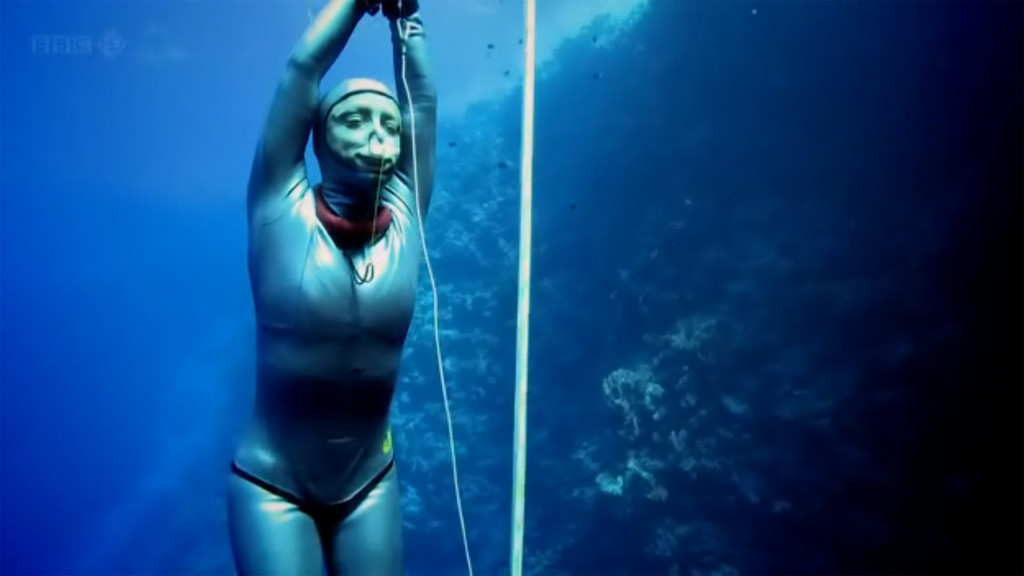 Footage shot by Jacques de Vos for the BBC's documentary: To Boldly Go, Down as seen on BBC TWO. Footage shot for the Sara Campbell segment.<br /> <br /> Location: Blue Hole, Dahab - Egypt<br /> <br /> All footage shot while freediving (on a single breath).