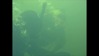 Diving in Folsom lake