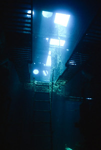 View of the overhead catwalk from the Engine Room doorway. Wreck of the Cartanser Sr. Little Buck Island, USVI