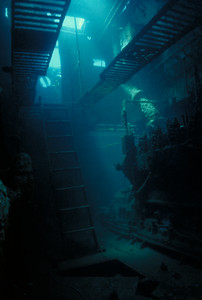 Engine Room of the Cartanser Sr. Little Buck Island, USVI