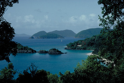 Trunk Bay on the beautiful island of St. John.