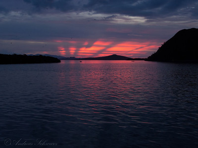Checkered Sunset, Komodo 2013