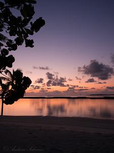 Morning gold, Maldives 2014