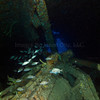 Rhone 2011-07-28 - 10-19-34
