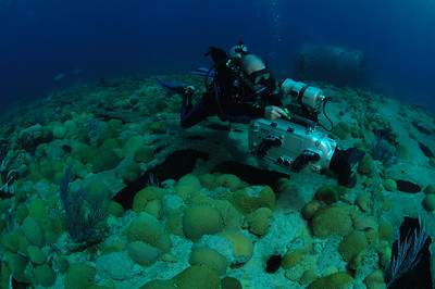 Cinematographer Wes Skiles uses his high definition camera in its Amphibico housing to make an environmental film in the shallow waters off the coast of Bermuda.