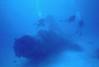 "Wreck of PBM ""Mariner""  flying boat on the bottom of Enewetak Atoll lagoon.<br /> January 26, 1981"