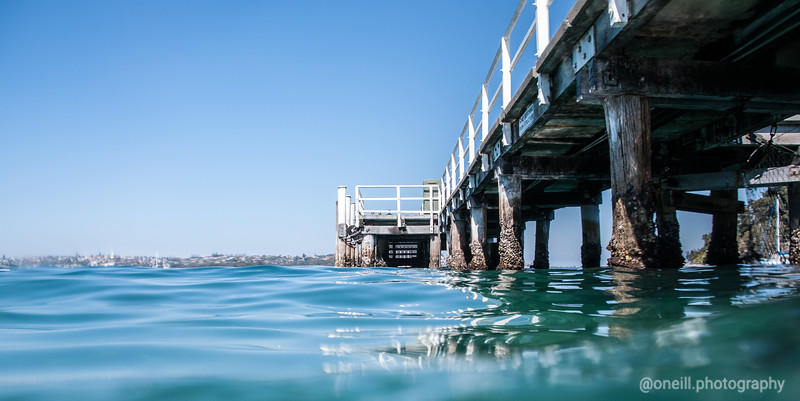 Snorkelling at Chowder Bay, Sydney Harbour