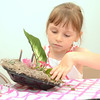Michaela Mastrolia, 5, Lewisburg, adds moss to her fairy garden she was making at the Packwood House in Lewisburg on Tuesday.