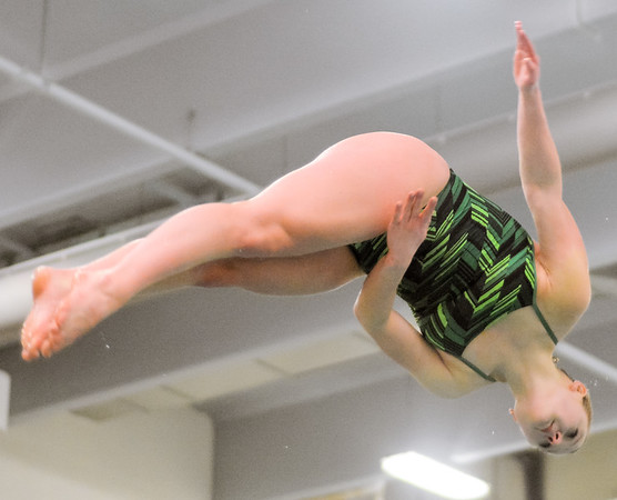 Lewisburg's Bailee Dyrof twists in the air during diving practice on Thursday at Susquehanna University.