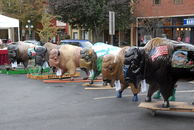 A heard of painted buffalo were on display in Lewisburg on Wednesday afternoon as part of the Union County Bicentennial.