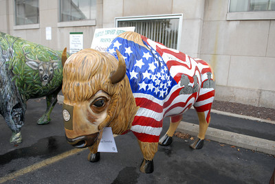 The White Deer Township buffalo got a patriotic theme for its paint job as part of the Union County Bicentennial celebration. All 15 of the painted buffalo were on display Wednesday in Lewisburg.