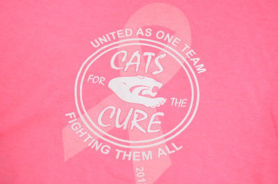 The logo on t-shirts sold by the Mifflinburg cheerleaders to raise money this year to fight cancer.